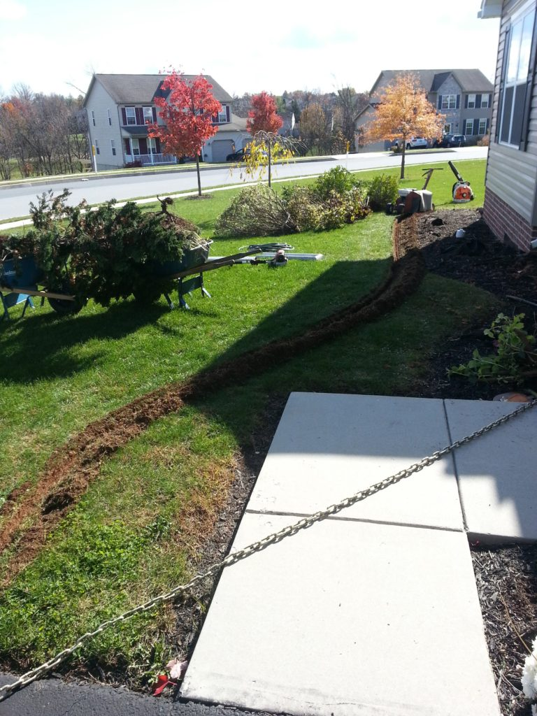 Edging Garden Bed 2