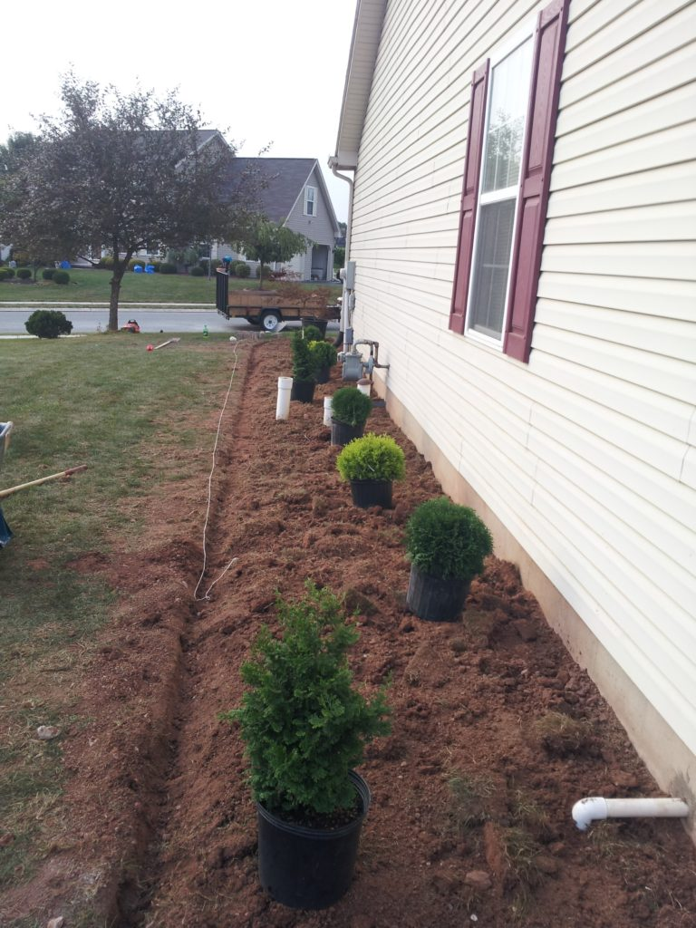 New Landscape Install 8